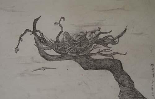 鸟巢卡通简笔画