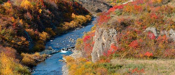 六盘山国家森林公园秋色迷人