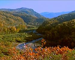 六盤山森林公園
