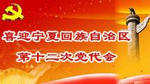 喜迎宁夏第十二次党代会