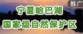 庆祝澳门回归十五周年文艺晚会